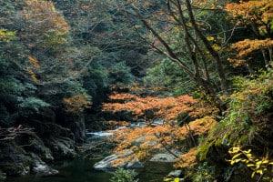 三段峡 広島