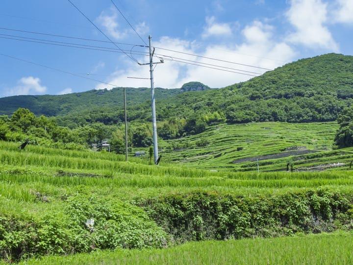 小豆島 風景 棚田