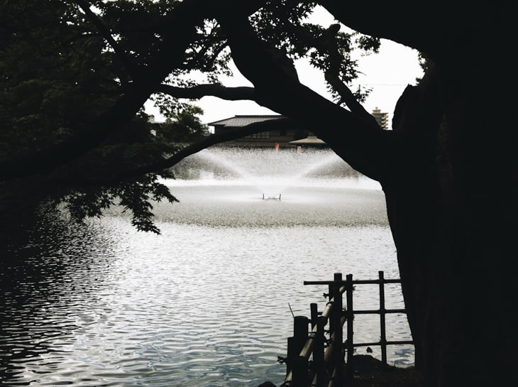 高岡古城公園 02