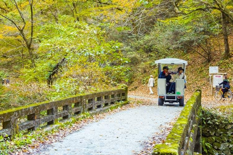 帝釈峡 観光 バス