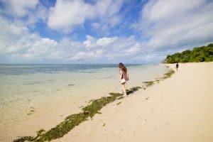 グリーン島 海