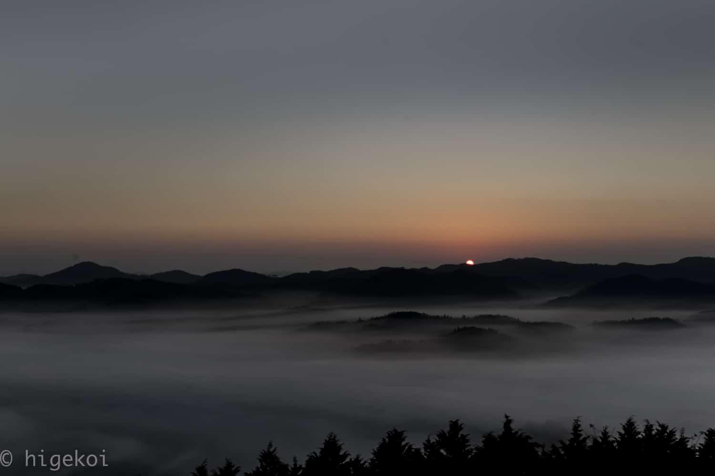 雲海 紙ヒコーキタワー