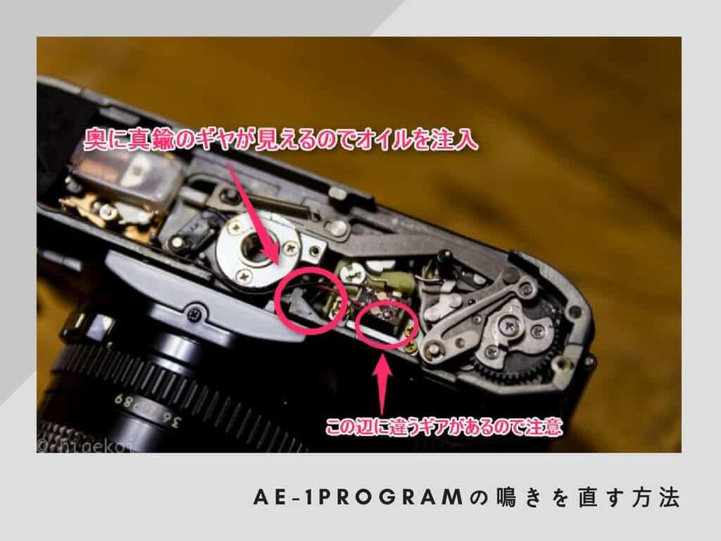 AE-1鳴き