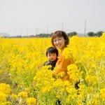 ベイファーム菜の花