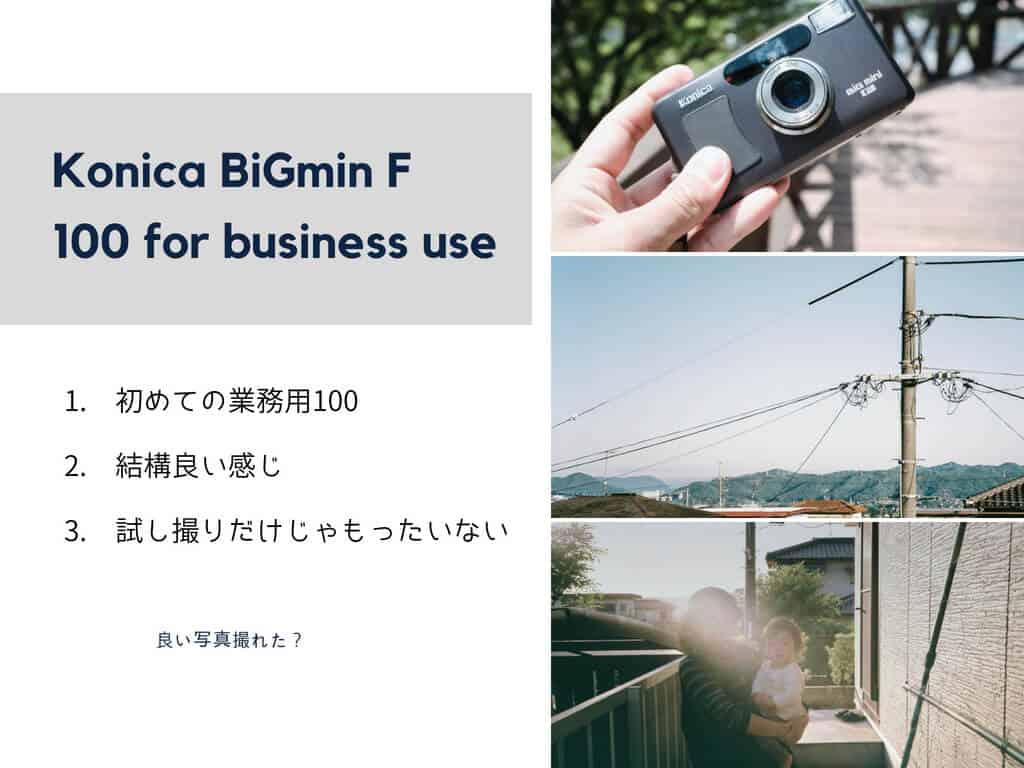BiGminiF作例