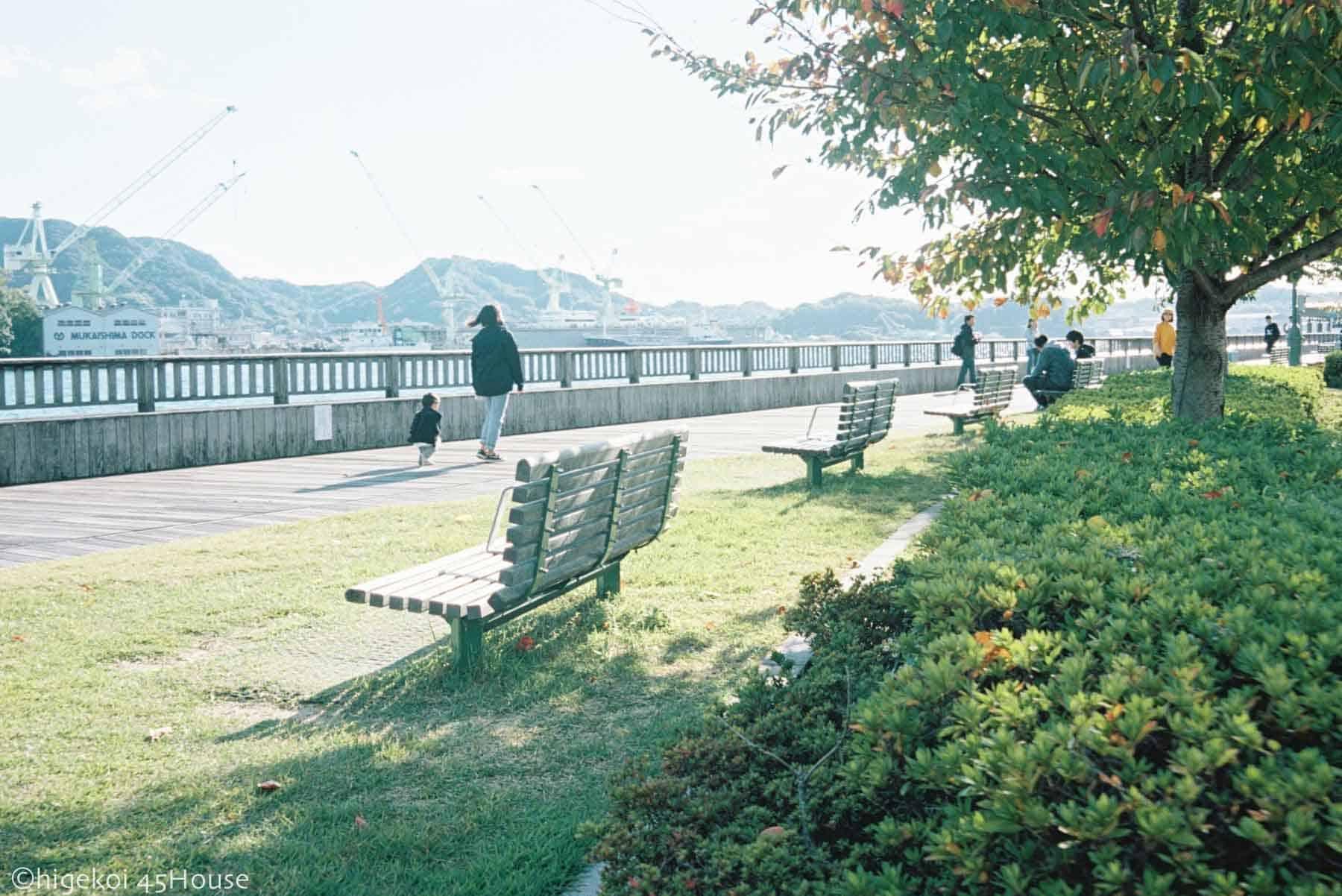 尾道ポートラ160 ナチュラ