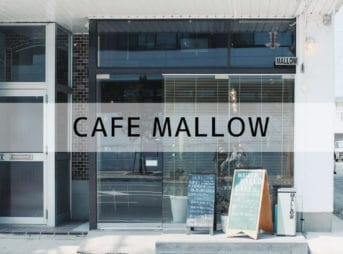 CAFE MALLOW